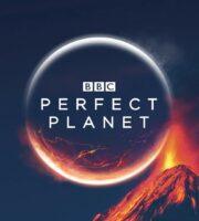 Dokonalá planeta online seriál